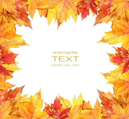 Colorful autumn leaves frame on white background