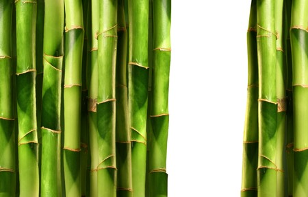 Bamboo shoots stacked together on white