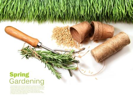 turba: Hierba, semillas, macetas de turba y cable para la primavera en blanco