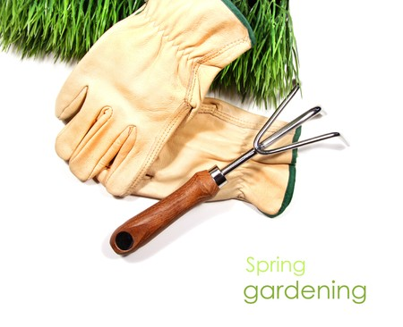 Green grass, gloves, and garden tool on white Stock Photo - 4077777