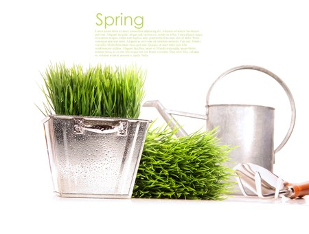 Watering can with grass and garden tools on white photo