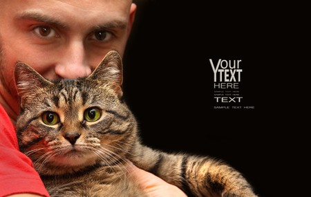 gato atigrado: Hombre gato atigrado con grandes ojos verdes