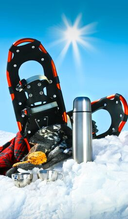 Winter fun with hot chocolate and cookies in the snow Stock Photo - 4116762