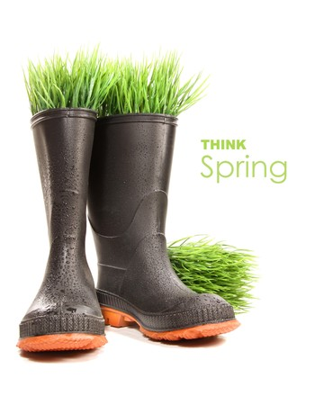 Rubber boots with grass on white background