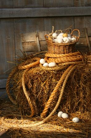 Basket of eggs on a bale of hay in the barn