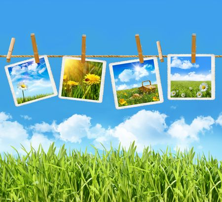 clothesline: Tall grass with 4 pictures on clothesline with blue sky