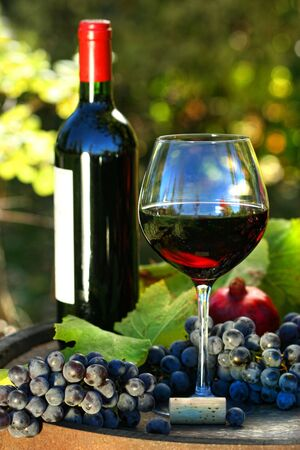 Glass of red wine with bottle and grapes against colorful foliage Stock Photo - 5414728