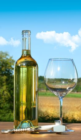 Empty glass with a bottle of white wine against blue sky Stock Photo - 5470780