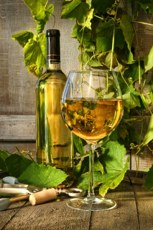 Glass of white wine and bottle on barrel with vines in background