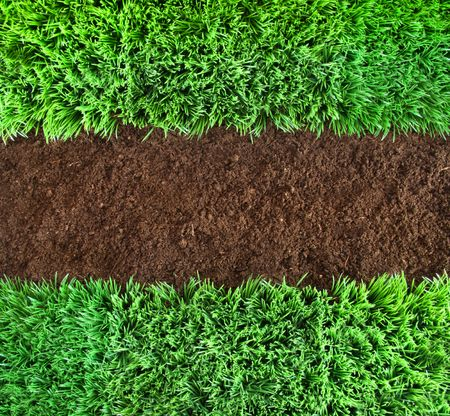 Short green grass and brown earth Background