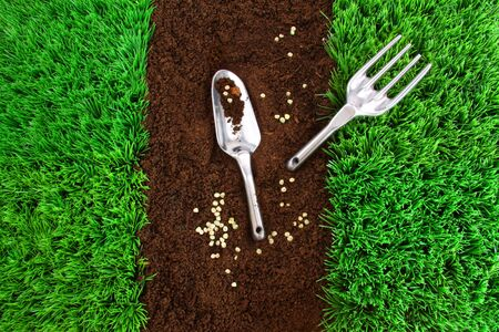 Garden tools on earth with green grass Stock Photo - 7000065