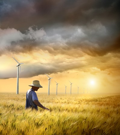 Farmer checking his crop of wheat against a beautiful sunset photo