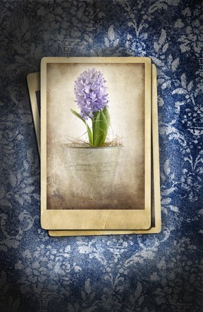 Grungy denim with photos on faded floral background photo