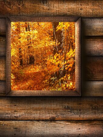 Fall landscape view through a pine window photo
