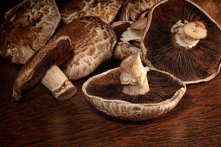 agaricus: Closeup of fresh portobello mushrooms on wood surface  Stock Photo