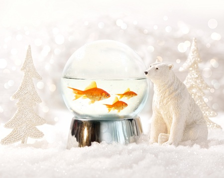 Snow globe with fish in magical winter scene photo