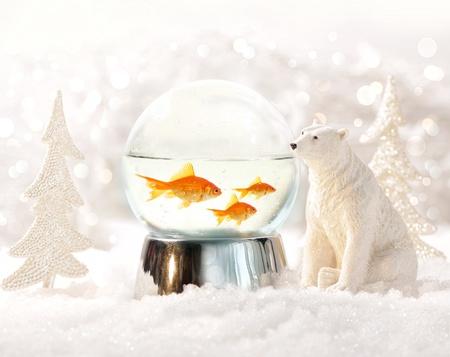 Snow globe with fish in magical winter scene photo