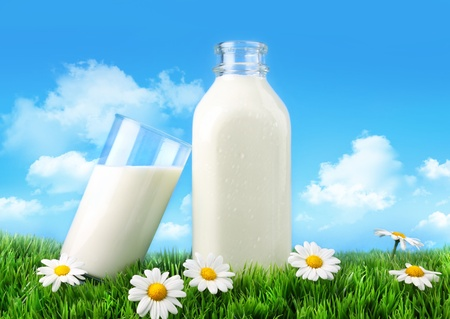Bottle and glass of milk with grass, daisies and sky photo
