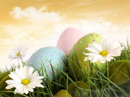 Closeup of decorated easter eggs in the grass with daisies Stok Fotoğraf - 8980947