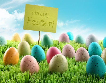 Colorful Easter eggs with sign in a grass field with blue sky