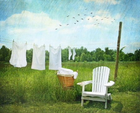 clothesline: Laundry drying on clothesline on beautiful summers day