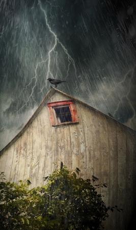 Spooky antiguo granero con cuervos en una tormentosa noche lluviosa Foto de archivo - 10001329