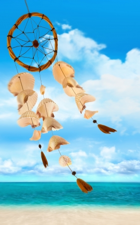 wind chime: Shells blowing in the wind at sea shore