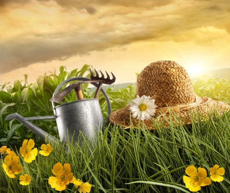watering plants: Water can and straw hat laying in field of corn with sun Stock Photo