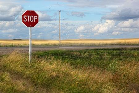 Rural stop sign on the prairies in Saskatchewan