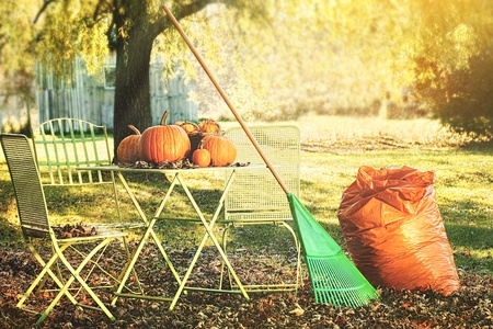 Beautiful autumn day for racking leaves and preparing for Halloween photo
