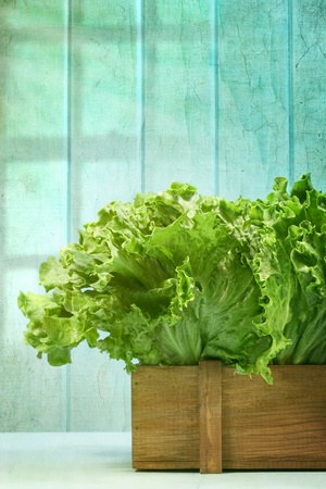 Leaf lettuce in wooden box against grunge background photo