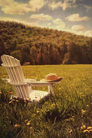 tall grass: Adirondack chair in a field of tall grass Stock Photo