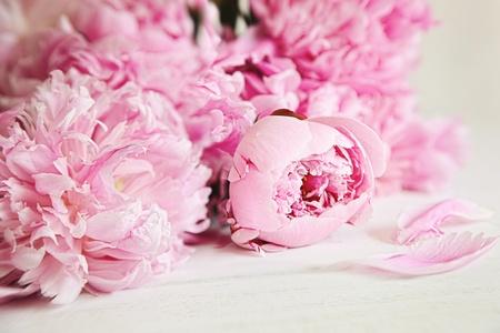 木材表面に美しいピンクの牡丹の花