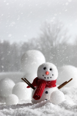non urban scene: Snowman with wintery snow background