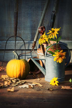 sheds: Garden shed with tools, pumpkin and flowers Stock Photo
