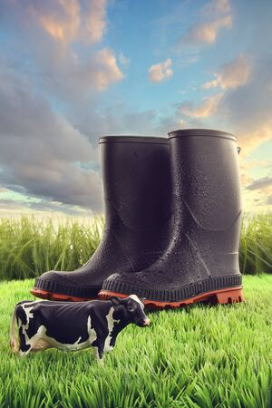 greenfield: Rubber boots in grass with toy cow and bright sky Stock Photo