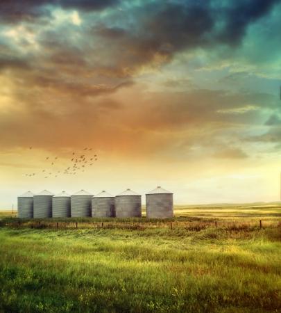 夏の終わりの草原穀物サイロ 写真素材