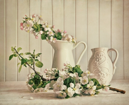 Still life of apple blossom flowers in vase on table photo