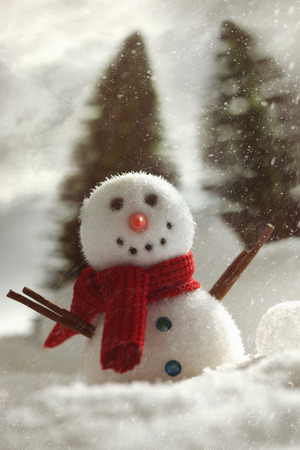 non urban scene: Little snowman with winter snow background
