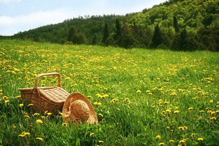 flower baskets: Picnic basket in the tall grass