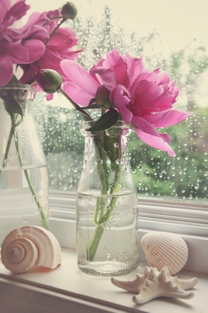 colorize: Peony flowers in milk bottles on the window sill