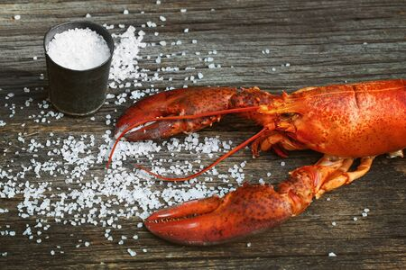 coarse: Cooked lobster with coarse salt on wood