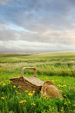 basket: Picnic basket and hat in the tall grass
