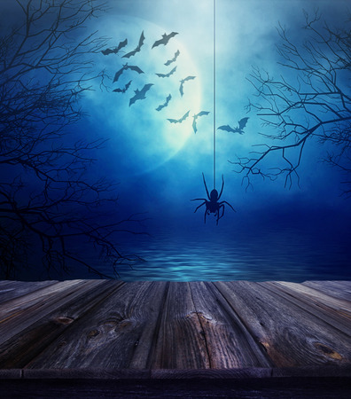 spooky forest: Wooden floor with spider and spooky Halloween background Stock Photo