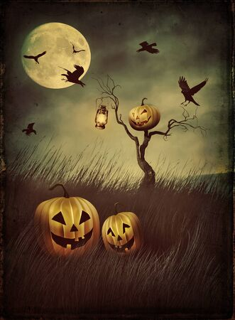 fields  grass: Pumpkin scarecrow in fields of tall grass at night with vintage look