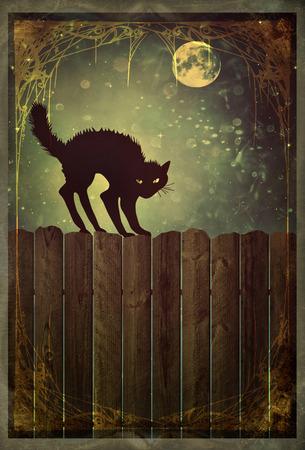 silueta de gato: Gato negro en la cerca de madera vieja en la noche con mirada de la vendimia