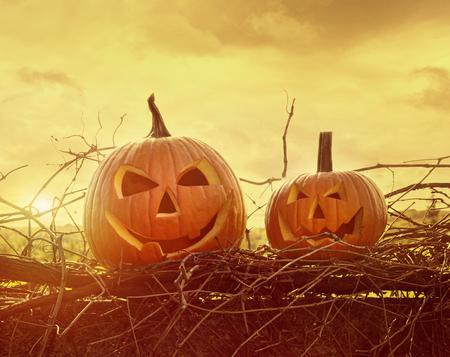 calabazas de halloween: Calabazas cara divertida que se sienta en la vid y la cerca