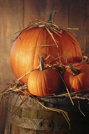 mini farm: Rustic autumn still life with pumpkins on barrel