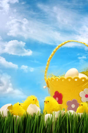 Easter chicks against blue sky background