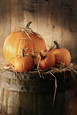 mini farm: Autumn still life with pumpkins on barrel